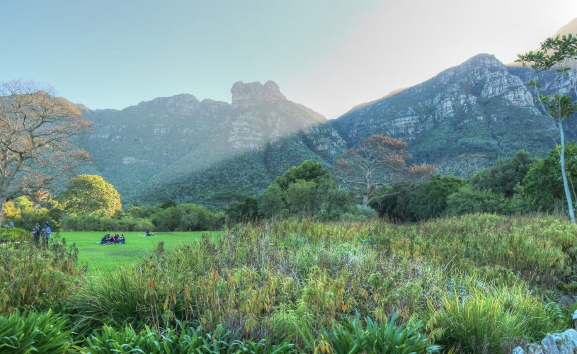 Nature Lover's Guide to Cape Town