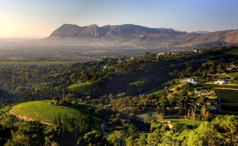 Exploring the Constantia Wine Route And all there is to see, smell, taste, and experience!
