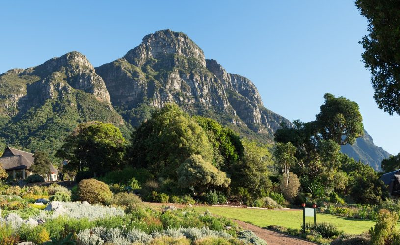 The Best Parks and Gardens in Cape Town (many of which are FREE)